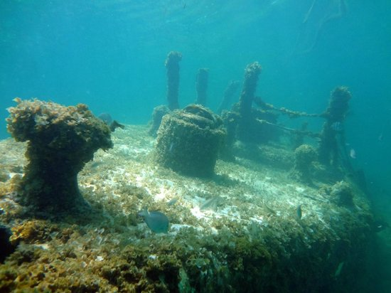 SeaPro Water Sports: Sunken sub - top