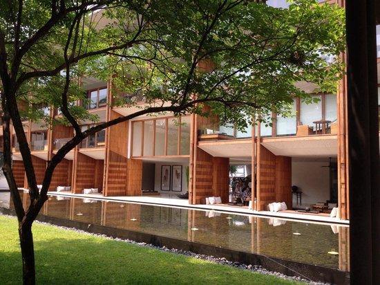 Anantara Chiang Mai Resort : Peaceful garden faced with lobby