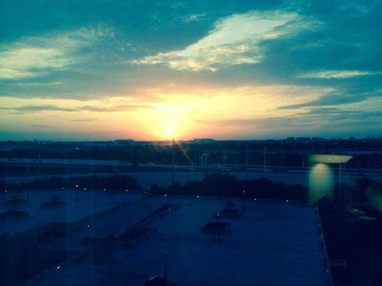 Grand Hyatt Tampa Bay: Sunrise from my room on the 9th floor.