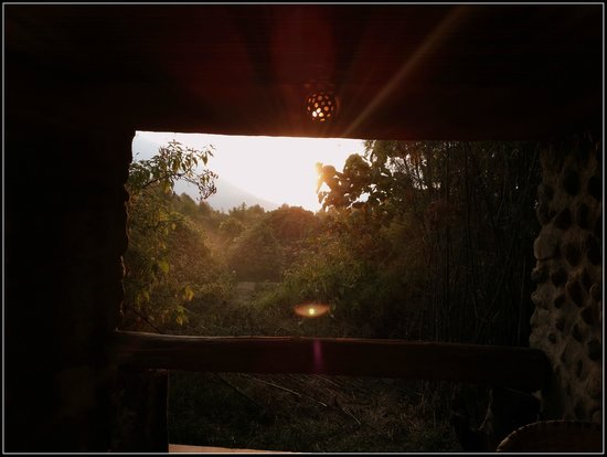 Mountain Gorilla View Lodge: View from room's private pation