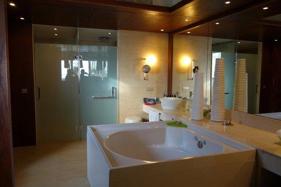 Barcelo Bavaro Palace : main bath vanity and shower