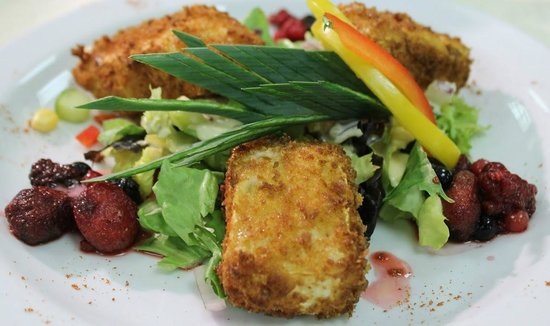 The Friary Tulsk's deep fried brie and wild forest coulis