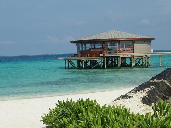 Centara Ras Fushi Resort & Spa Maldives : Viu bar