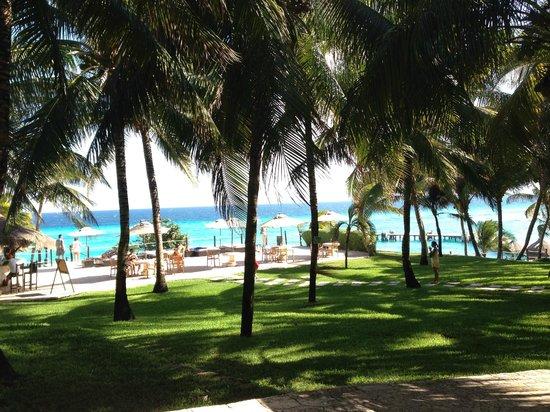 Garrafon Natural Reef Park : Vista desde el restaurant