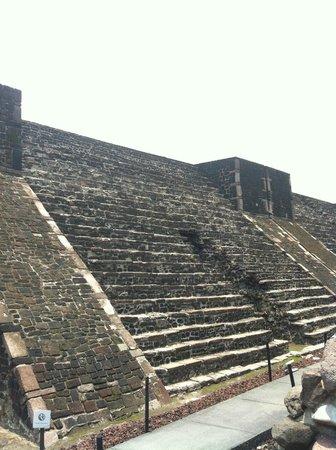 Tlatelolco : Temple