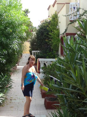 Apartamentos Maxorata Beach : Grounds