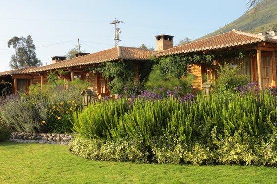 Hosteria Cabanas del Lago: Real Beauty