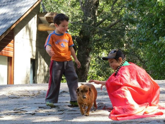 Altos del Alma: Salchi, el perrito del lugar