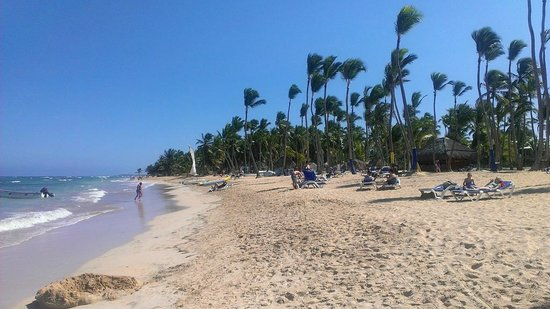 Sirenis Punta Cana Resort Casino & Aquagames : Пляж отеля