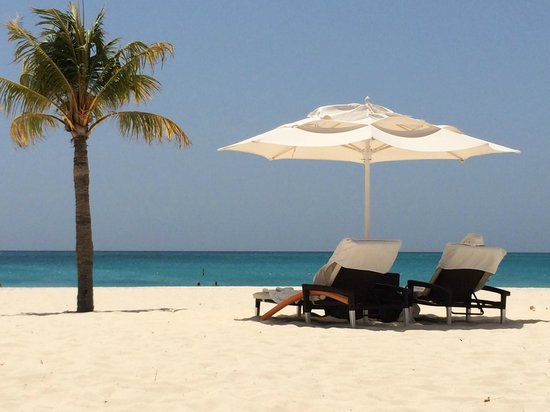 Bucuti & Tara Beach Resort Aruba : View from our chairs on the beach