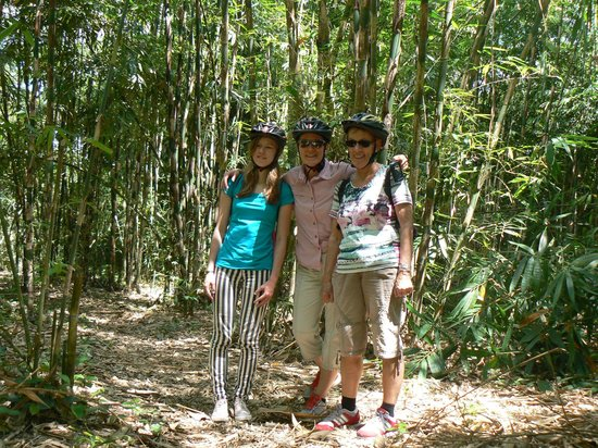 Bali Hai Bike Tours: Biking through bamboo forest