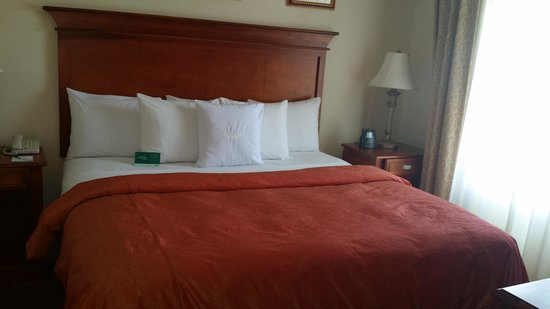 Homewood Suites by Hilton East Rutherford-Meadowlands : Bedroom