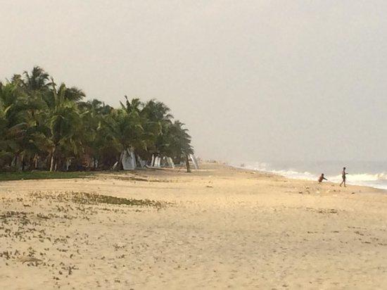 Marari Beach Resort : The beach
