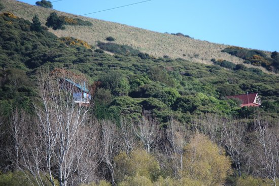 Hereweka Garden Retreat: View of retreat and owners home from road below