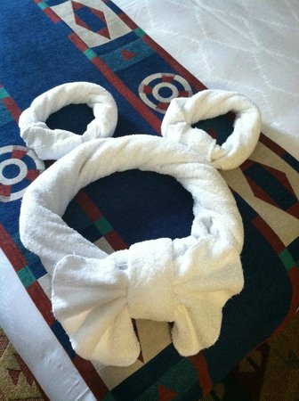 Artist Point: Mickey towel upon arrival