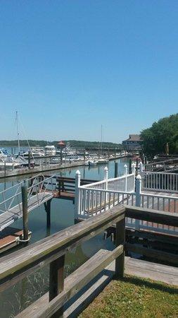 Hilton Head Harbor RV Resort and Marina: View of marina