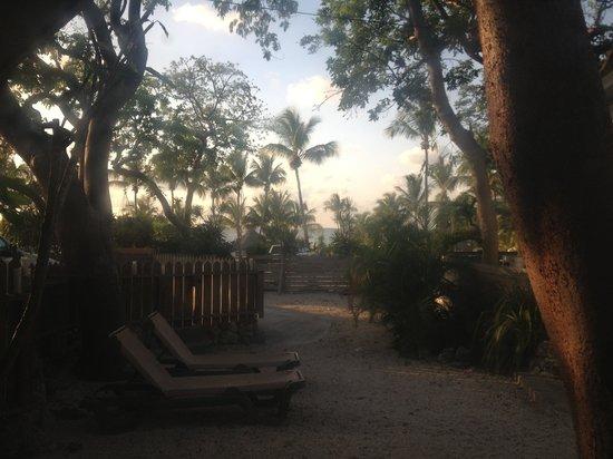 Dream Bay Resort : Backyard Patio