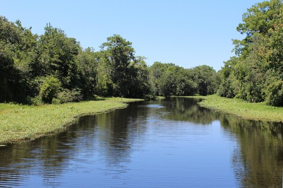Blue Heron River Tours: Old Florida when it was wild and free