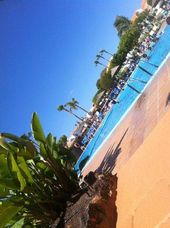 CLC Sunningdale Village : The beautiful pool