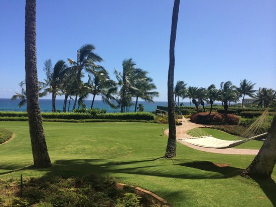 "Grand Hyatt Kauai Resort & Spa: view from our ""garden view"" room, fantastic!"