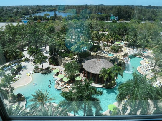 Seminole Hard Rock Hotel Hollywood : View from the room