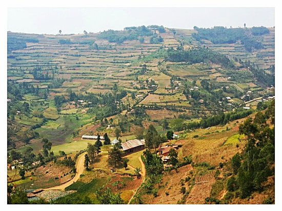 Kabale Backpackers: Hills of Kabale