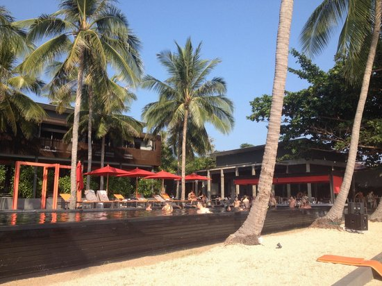 The COAST Resort - Koh Phangan: Infinity pool, beach front