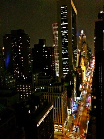 Viceroy Central Park New York: View from the rooftop