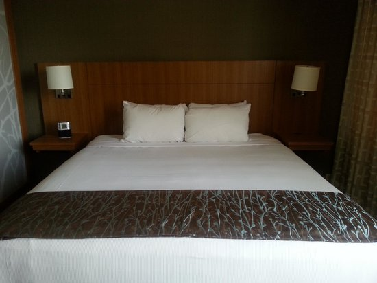 Hyatt Place San Jose/Downtown: King size bed
