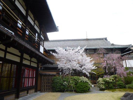 Gion Kobu Kaburenjo Theater: jardin derrière le théâtre