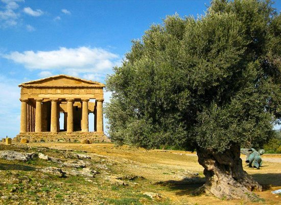 Valley of the Temples (Valle dei Templi): Temple of Concordia