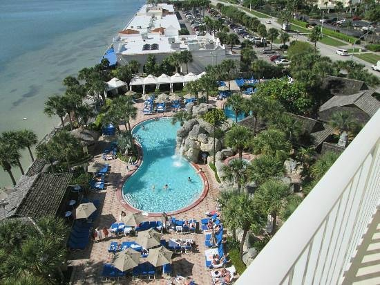 Clearwater Beach Marriott Suites on Sand Key: nice intracoastal view from suite back room, bring binoculars and watch for dolphins and fish