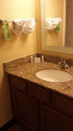 TownePlace Suites Savannah Midtown : Bathroom