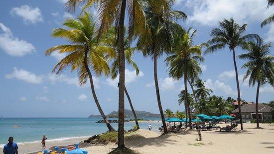 Bel Jou Hotel: Vegi beach