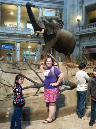 Museo Nacional Smithsonian de Historia Natural: I am so excited to be inside this building