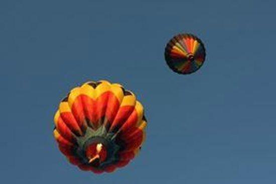 Hampton Inn & Suites Walla Walla: Balloon Stampede