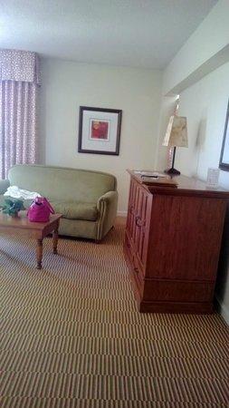 Francisco Grande Hotel & Golf Resort: Living area.