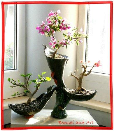 Bonsai and Art: Bonsaikreation
