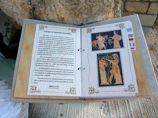 Bonsai and Art: Informationsbuch zur Skulptur vor der Galerie