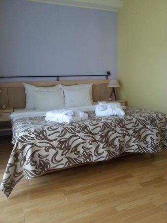 Sagadi Manor Hotel: Our room