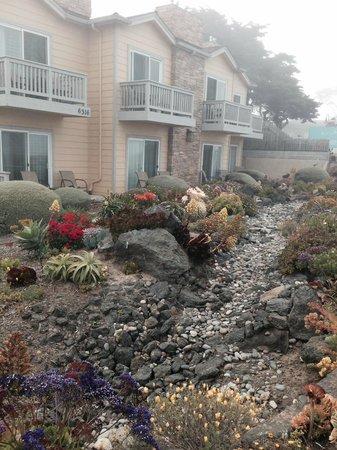 Pelican Inn & Suites : The Inn seen through the morning mist