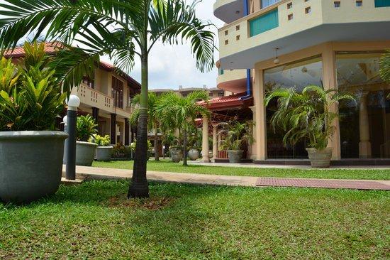 Rani Beach Resort: Вид с лежака)