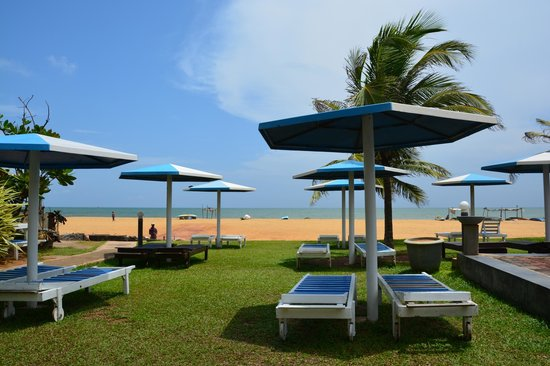 Rani Beach Resort: Территория отеля