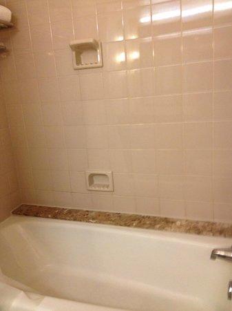Renaissance Baltimore Harborplace Hotel: Shower/Tub