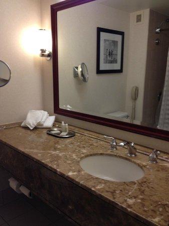 Renaissance Baltimore Harborplace Hotel: Vanity