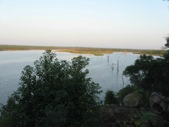 Mopani Rest Camp: View from the patio