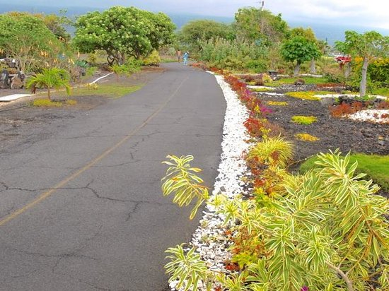 Old Kona Airport State Recreation Area: well manicured jogging area with fitness equipment