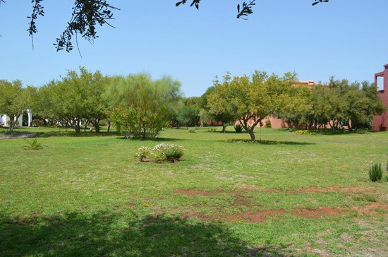 Domaine de l'Arganeraie: Jardin verdoyant