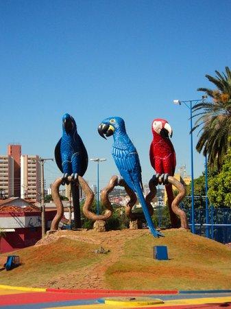 Praça das Araras - Foto de Praça das Araras 5ce8d6550ce6b