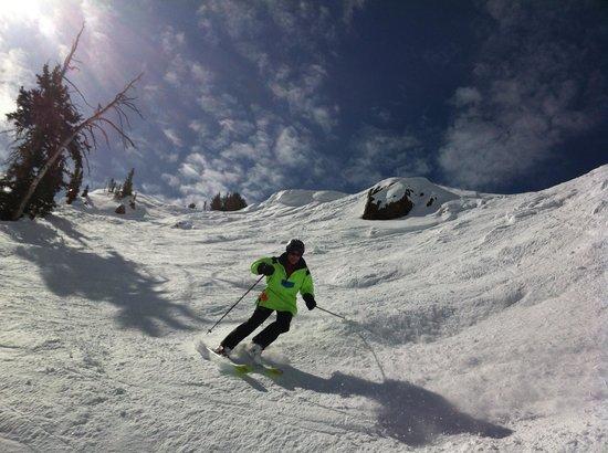 Snowbird Ski and Summer Resort: Cruising down the cirque